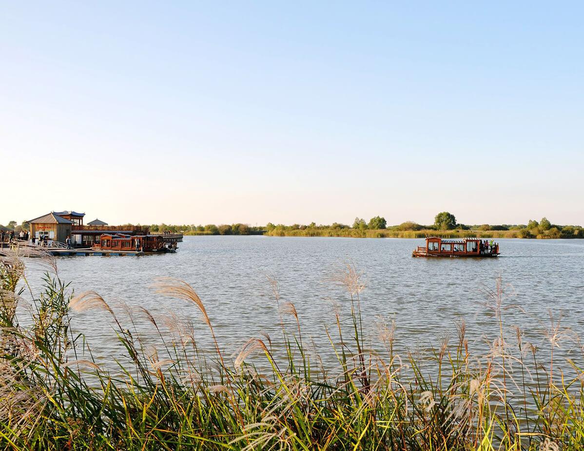 Wetland Park